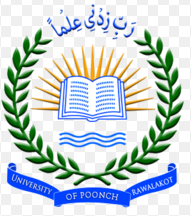 University of Poonch